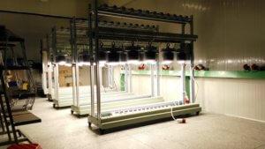 Aging test for LED Bulb lights