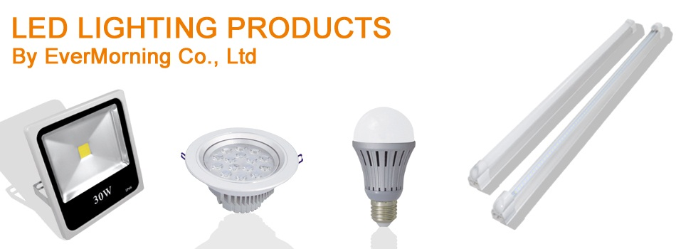 led lighting products by EverMorning