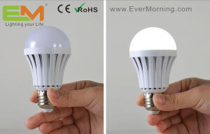 Rechargeable LED Emergency Bulb Light