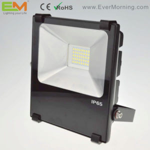 SMD floodlight 30W